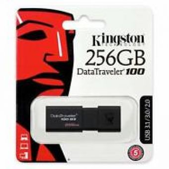 Kingston DataTraveler 100 G3 (256GB)